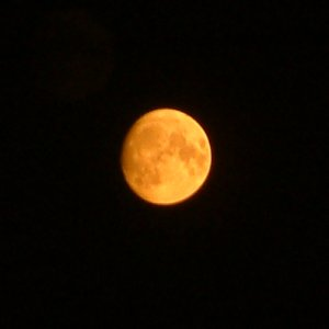 "The image ""http://www.strudel.org.uk/blog/astro/images/20050818_orange_moon.jpg"" cannot be displayed, because it contains errors."