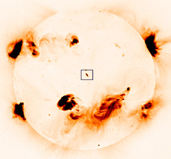 A negative image of the Sun showing the active region